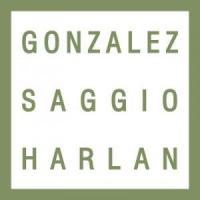 Gonzalez Saggio & Harlan LLP